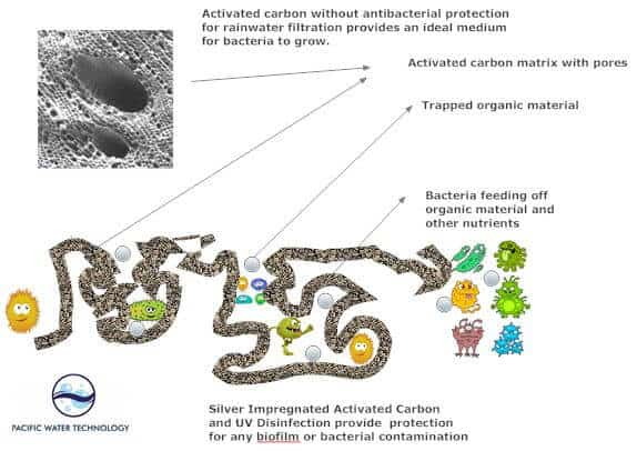 Bacteriostatic Activated Carbon